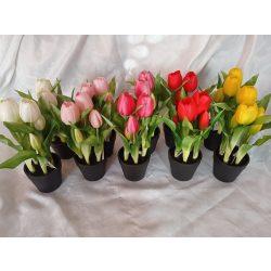 Élethű cserepes tulipán (db ár)