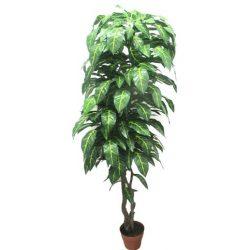 Philodendron fa műnövény 180 cm csíkos