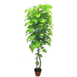 Hársfa műnövény 180 cm