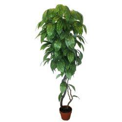Mangófa műnövény 150 cm