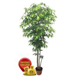 Zöld fikusz fa műnövény 180 cm